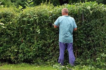 wat kost een tuinman