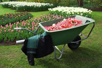 Tuin Aanleggen Kosten : Kosten gras aanleggen u kosten hovenier